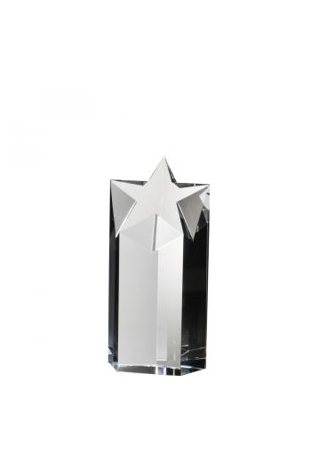 Starlite Award (small)