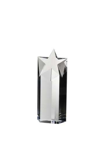 Starlite Award (medium)