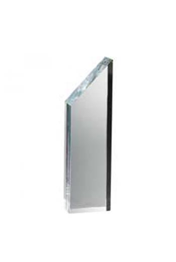 Manhattan Award (large)