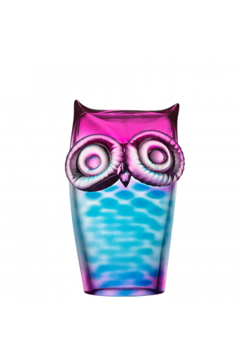 My Wide Life Owl (blue/pink)